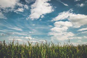 Fijnstof filters: goed voor zowel het imago als de gezondheid van boeren